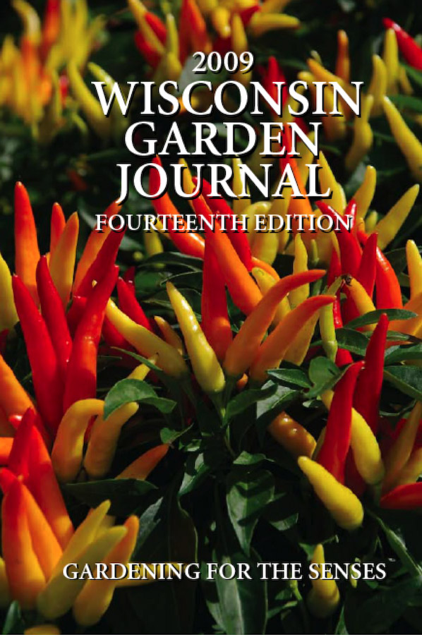 2009 journal cover