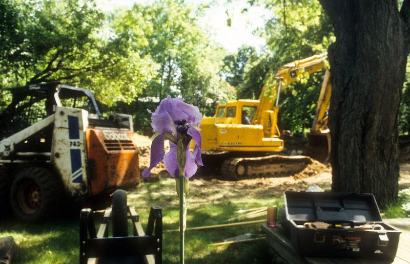 Iris and Equipment
