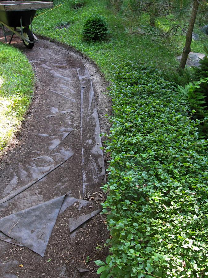 New Path-9