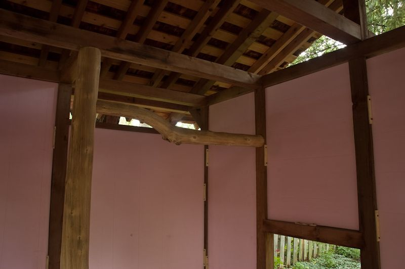Pink House-5