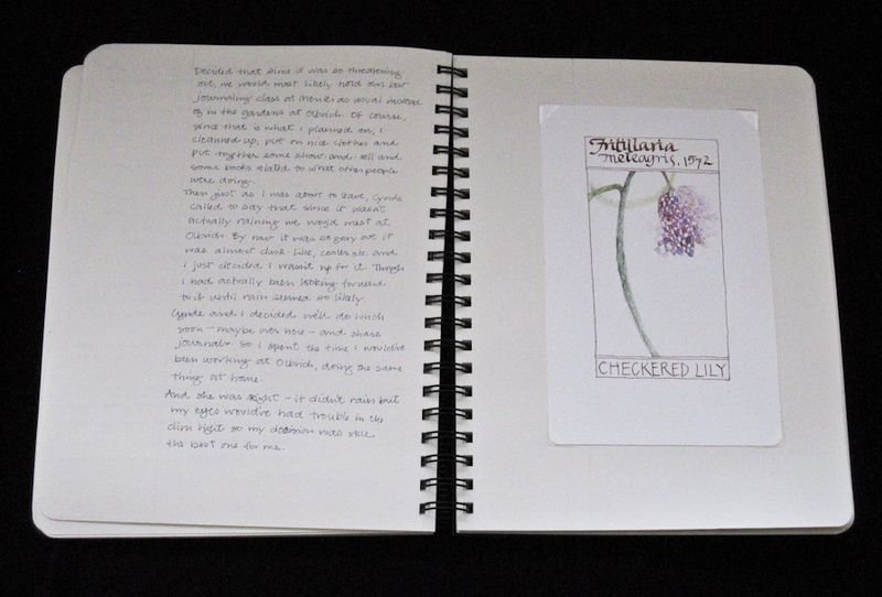 Notebooks-8