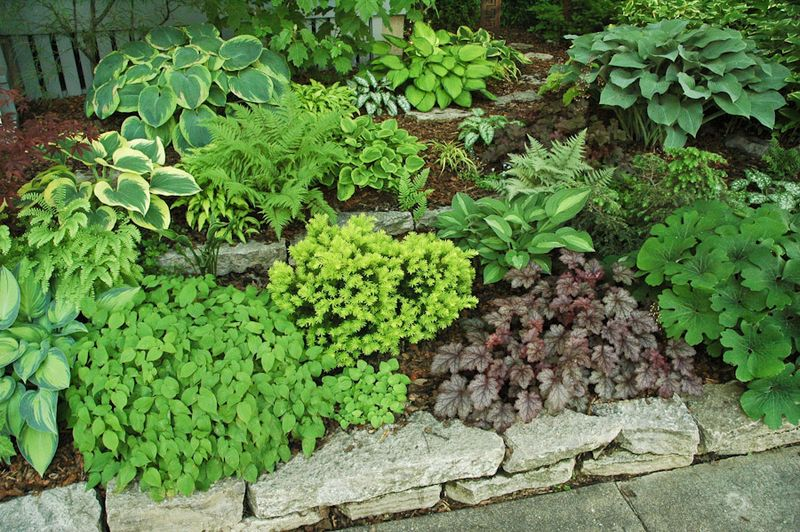 small front yard landscaping ideas pictures. Small, sloped and shady: A