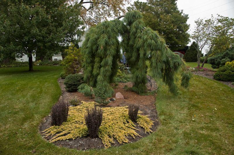 Iowa Private Gardens-18