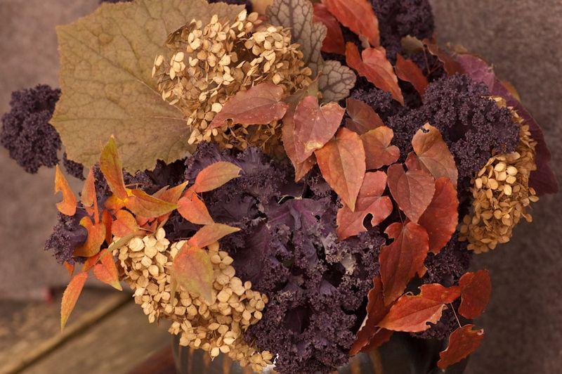 Leaf Harvest-1-2
