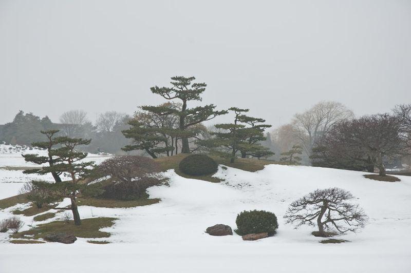 CBG in Winter-1