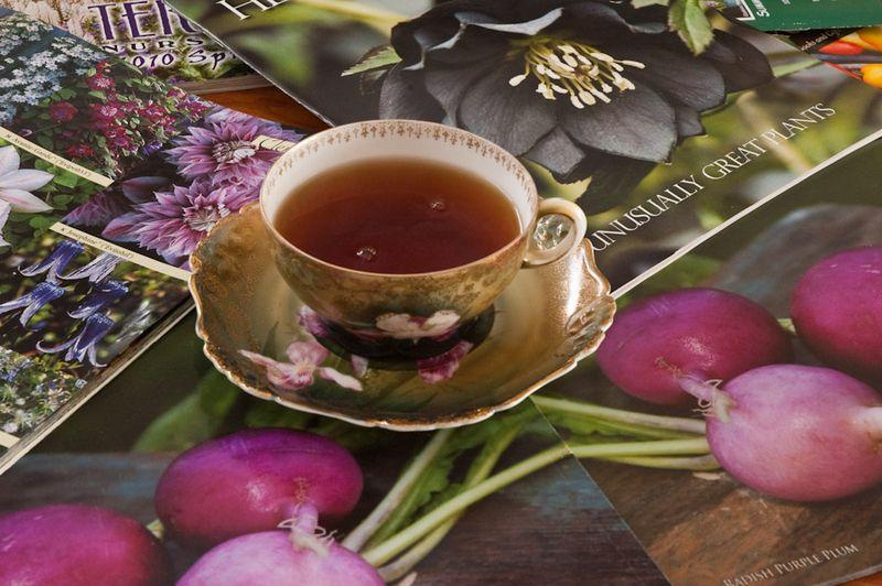 Tea Cups-2