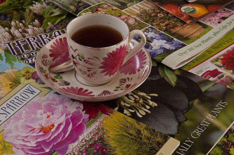 Tea Cups-5