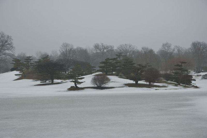CBG in Winter-3