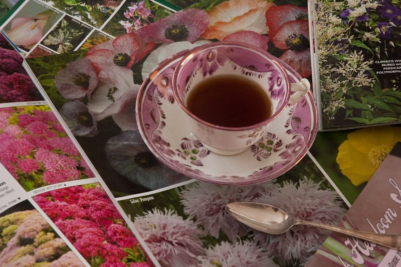 Tea Cups-3