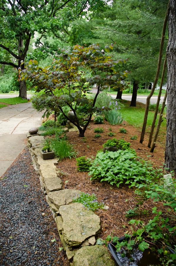 Front path, etc-23