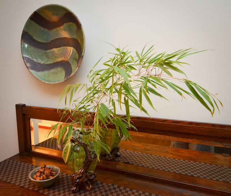Bamboo and Bowl-3