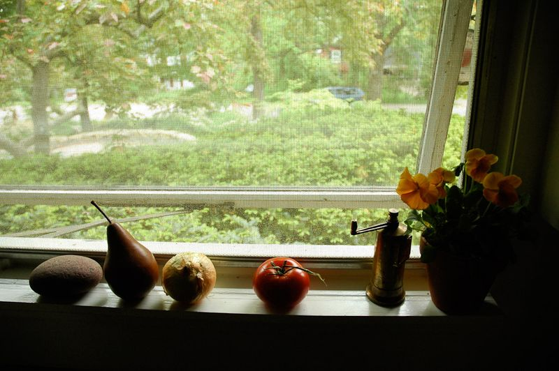 Garden Talk 2011-35