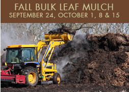 Homepage_fall_bulk_mulch_11-1