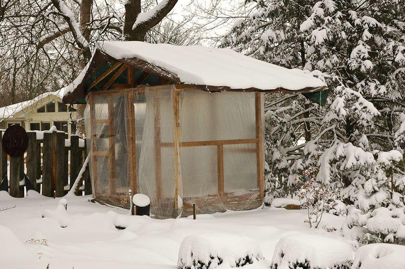 Tea House-4