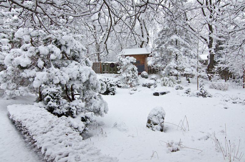 Snow Storm-6