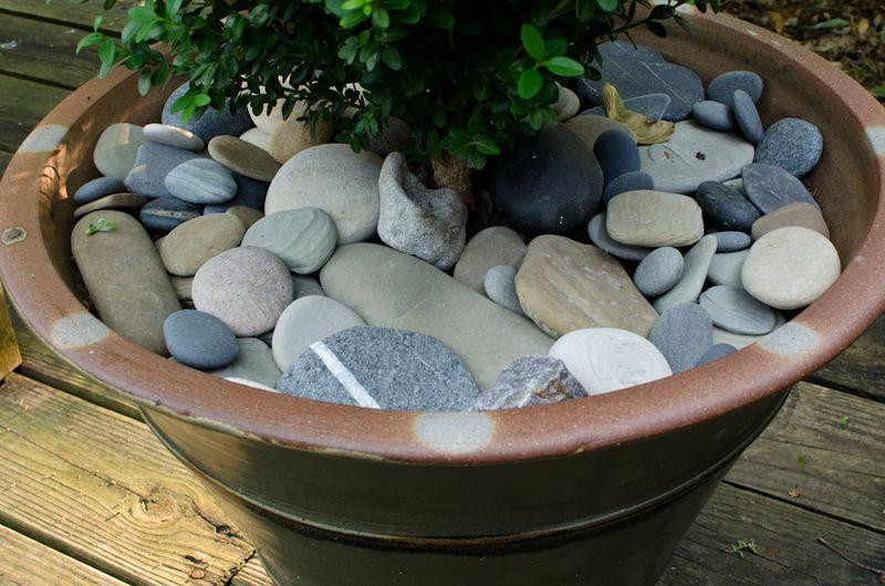 Beach Stones-4