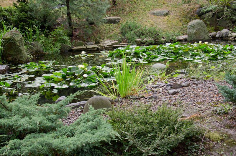 July Gardens 2012-9