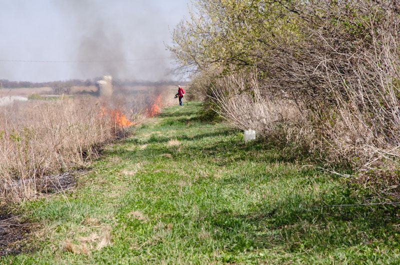 Prairie Burn-10
