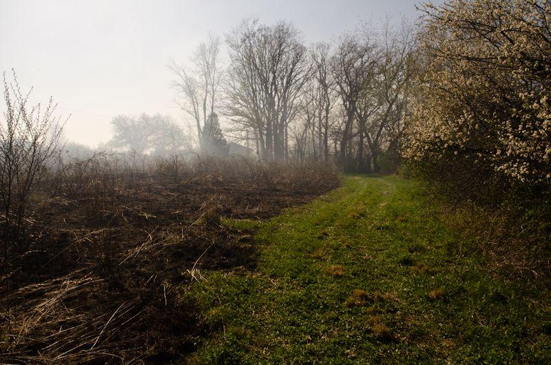 Prairie Burn-15