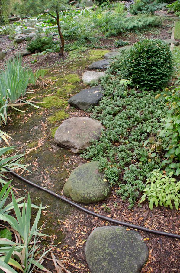 July Gardens 2012-11