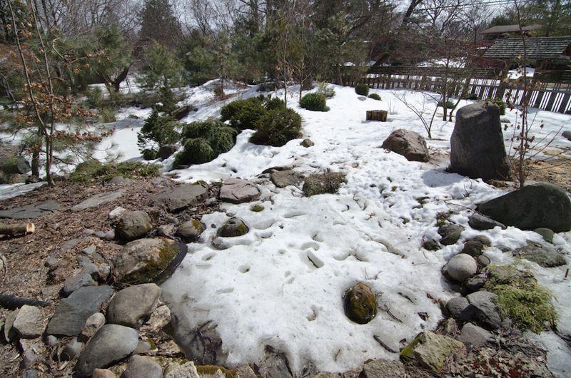 April Snow-9