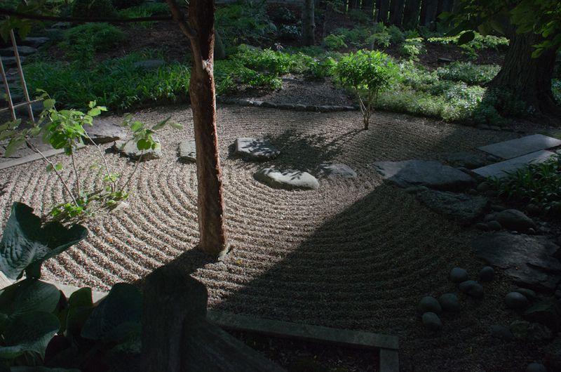 Lichens after rain-5