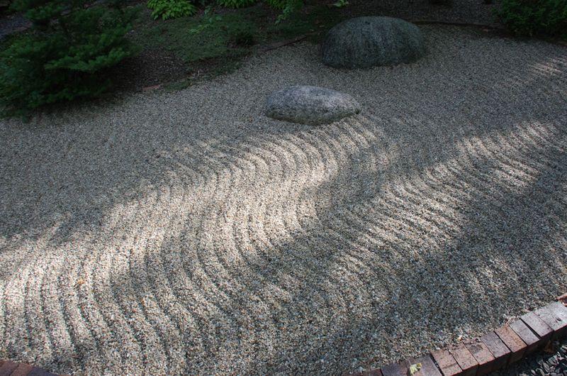 Lichens after rain-3