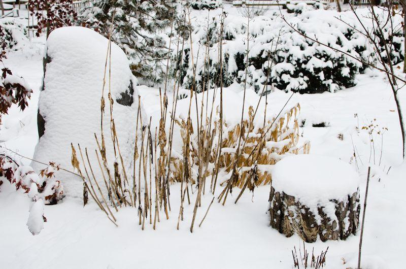 Snow 11-2104-1
