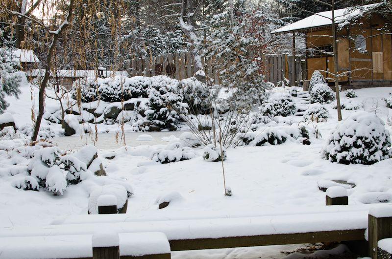 Snow 11-2104-16