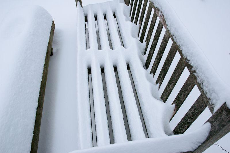 Winter Interest-6