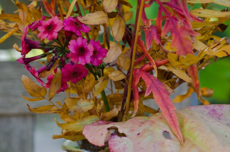 Fall Vases-4
