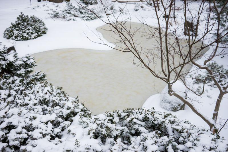Dec Snow-12