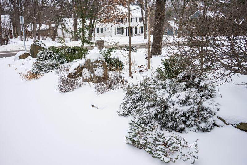 Dec Snow-22