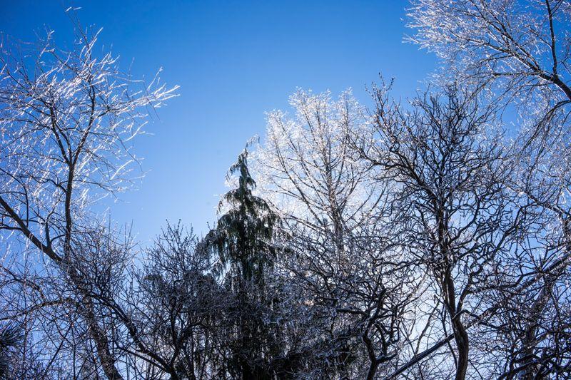 Ice Storm day 2-5