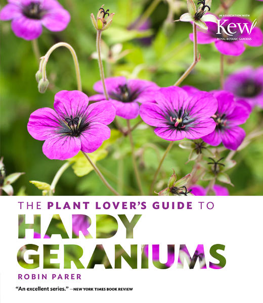 Hardy_geraniums