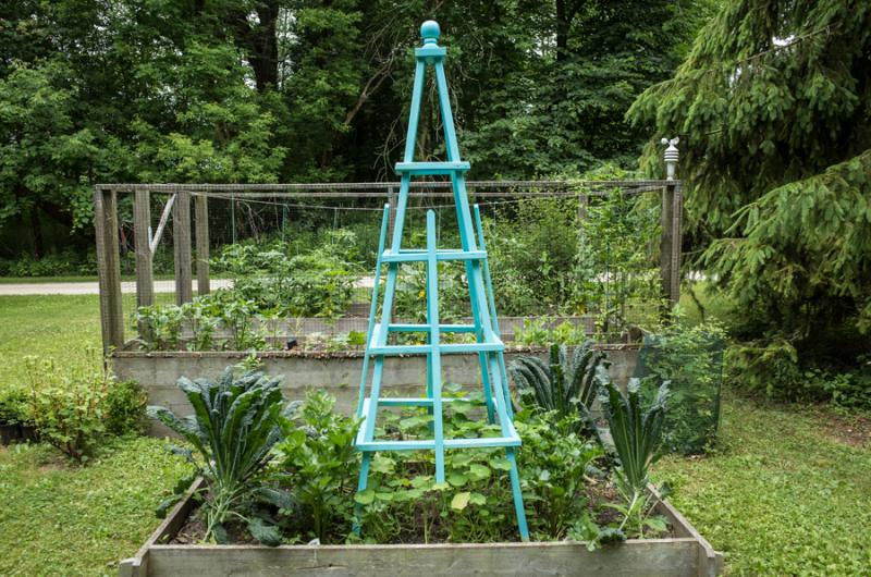Erin's Garden-13