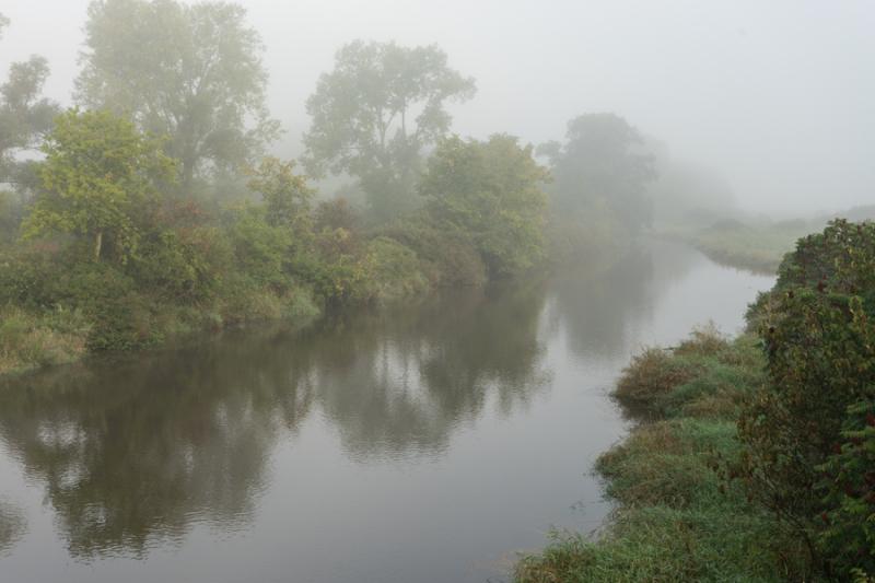 Foggy Morn-6