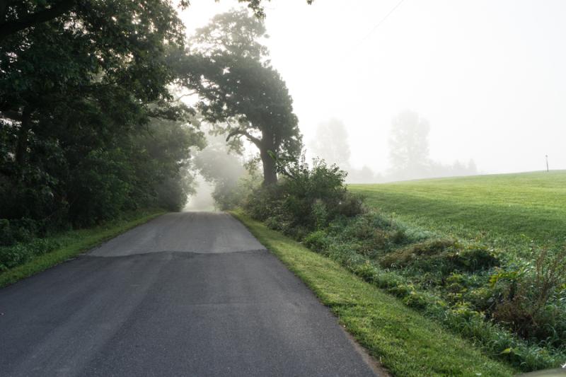 Foggy Morn-9