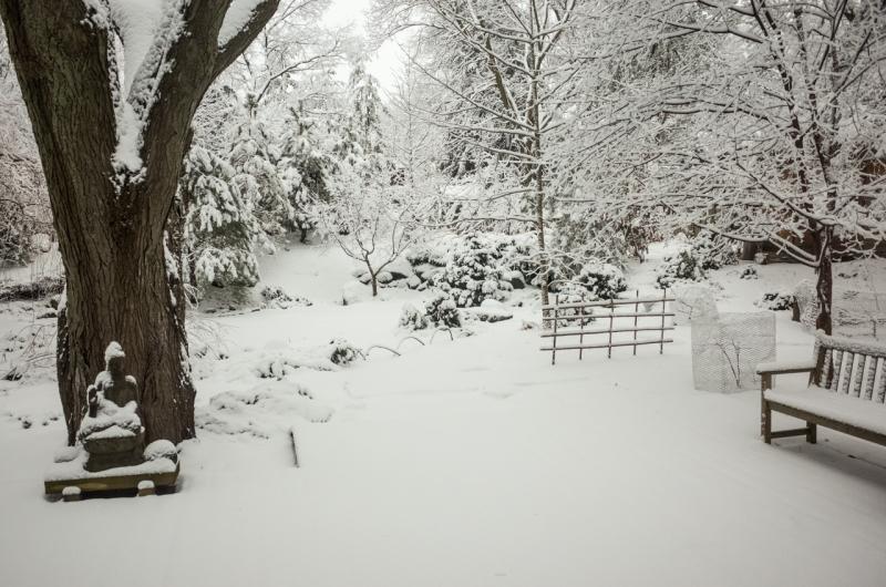 Snowfall-5
