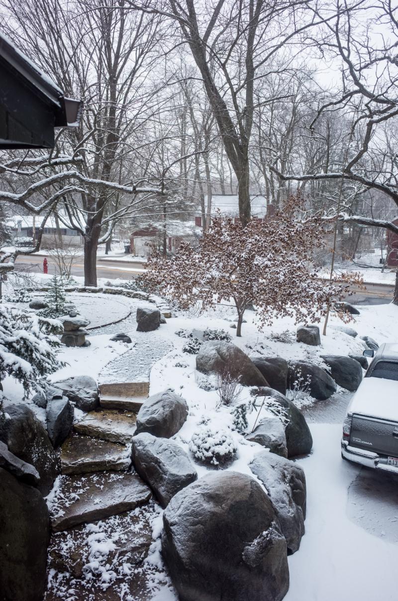 Spring Snow Yard-7