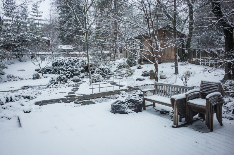 Spring Snow Yard-1