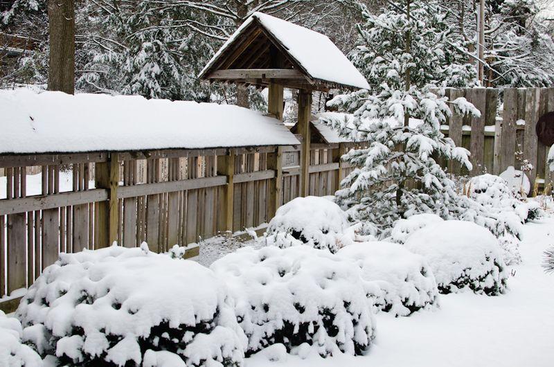 Snow 11-2104-14