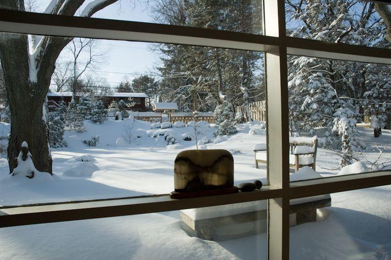 Winter Interest-1