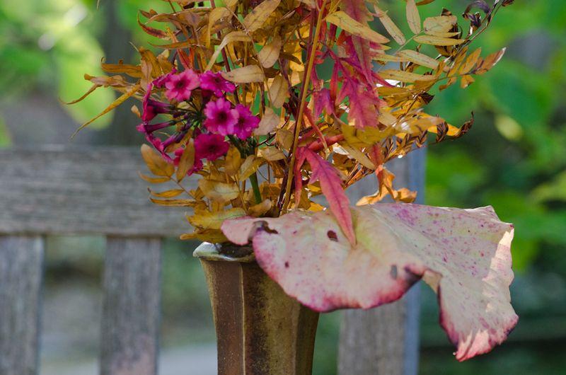 Fall Vases-6