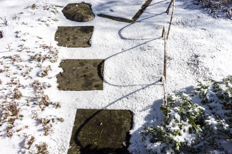 Ice Storm day 2-7