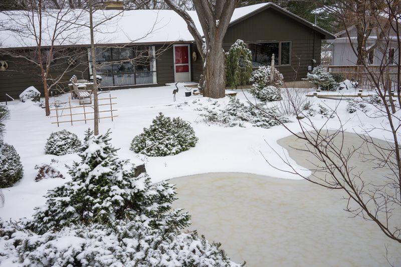 Dec Snow-13
