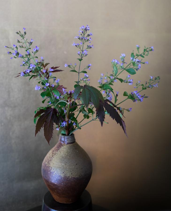 In a vase-1