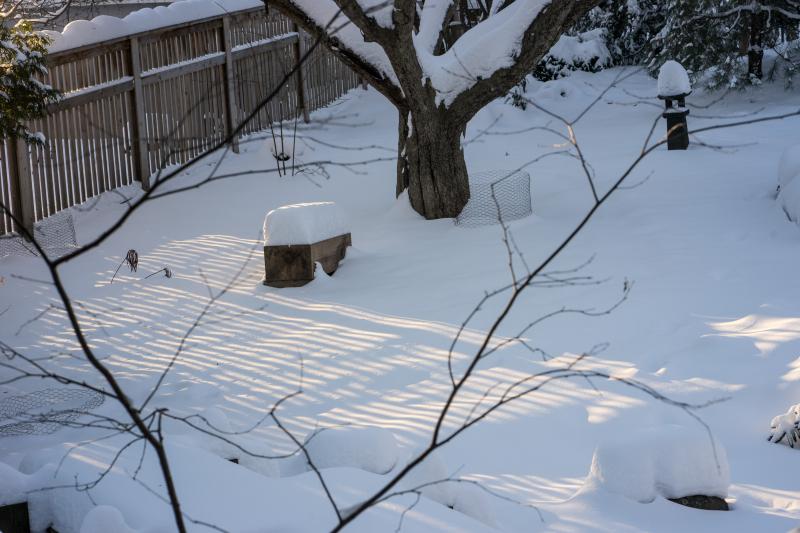 Buddha-snow-1