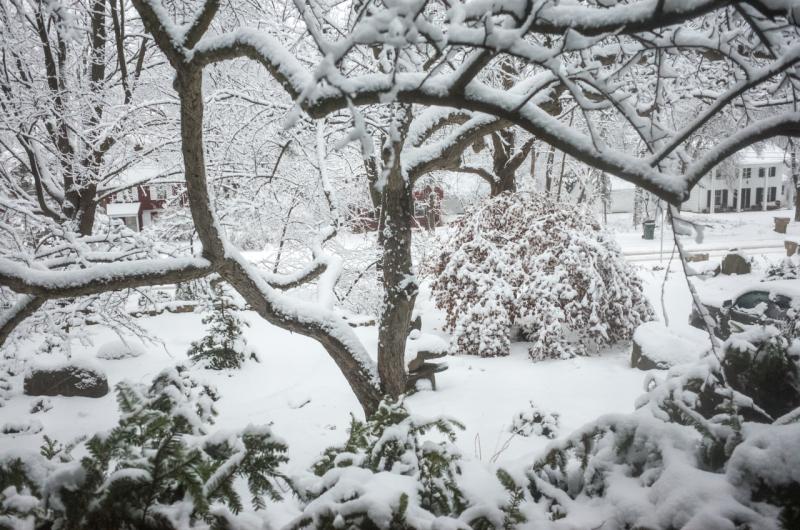 Snowfall-7
