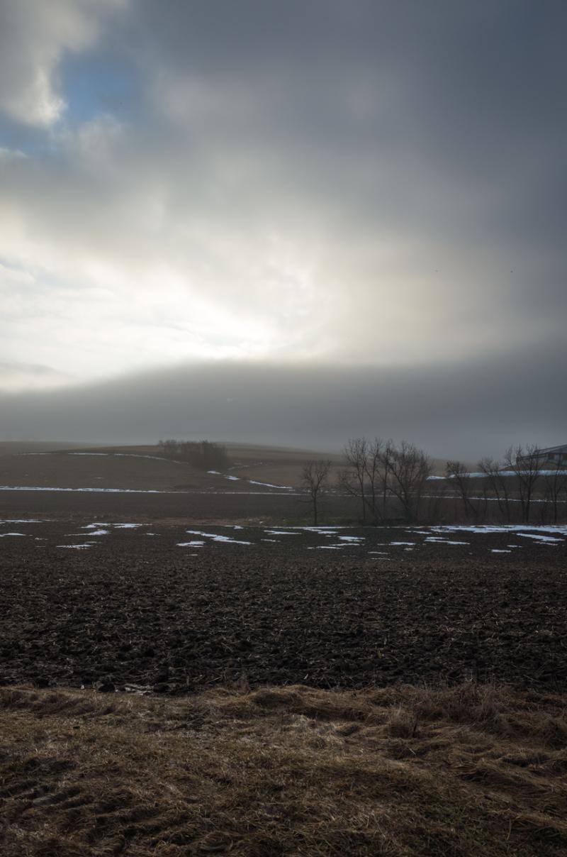 Landscape COR-1